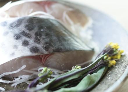 青背の魚「さわら」で良質の脂を