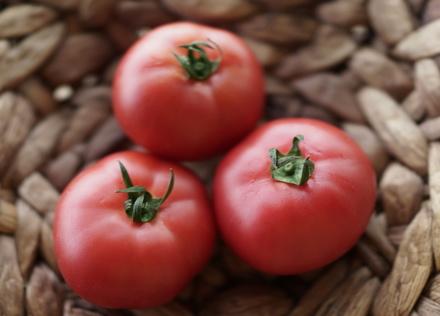 栄養盛りだくさん!「トマト」
