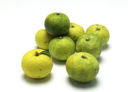 「柚子」で食卓に香りの彩りを