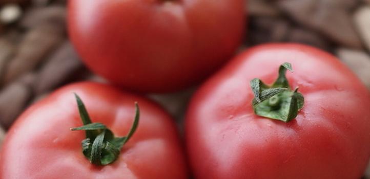 トマトはうま味たっぷりの緑黄色野菜