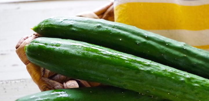 夏においしい野菜「きゅうり」。栄養と保存方法、レシピをご紹介