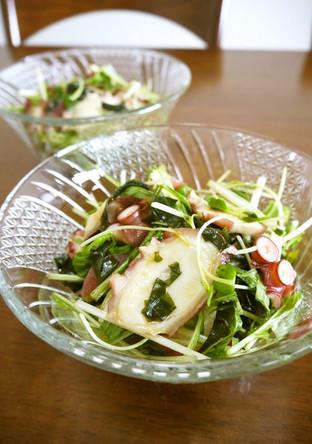 タコの水菜のサラダ わさび風味