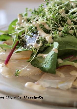 昆布〆真鯛のカルパッチョ 柚子胡椒風味