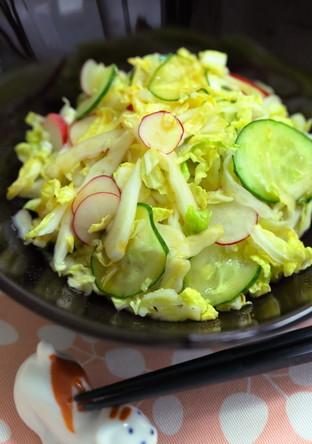 シャキシャキ食感を楽しもう 白菜サラダ