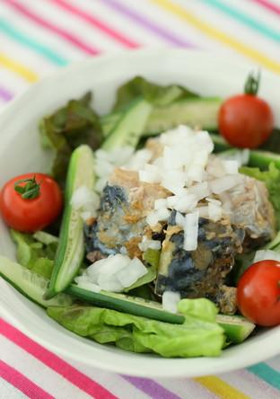サバ缶詰で簡単サラダ
