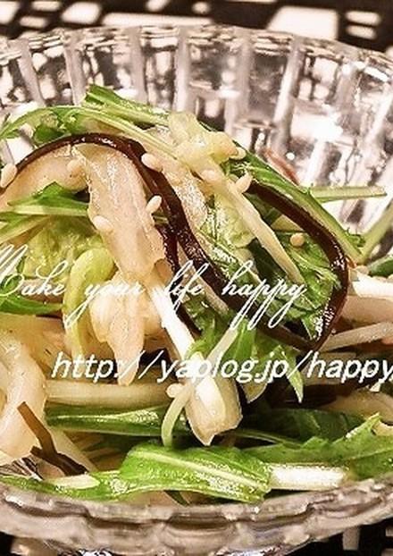 白菜と水菜のゆず胡椒&塩昆布☆サラダ