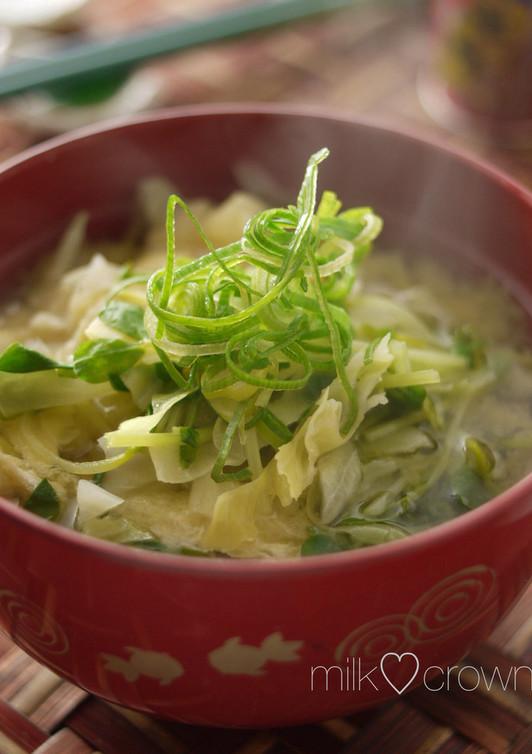 キャベツと豆苗のお味噌汁