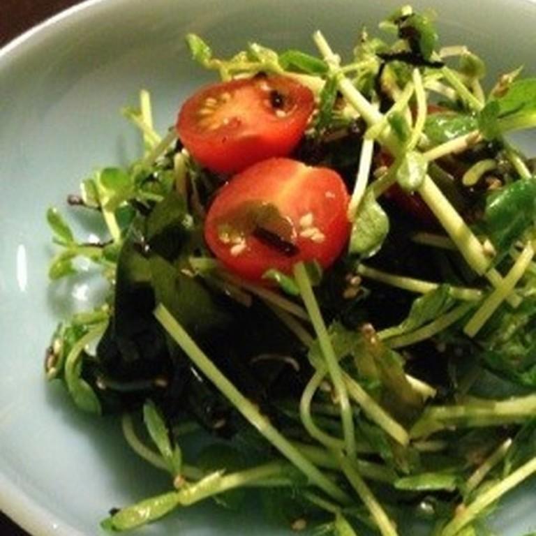 豆苗の海藻サラダ